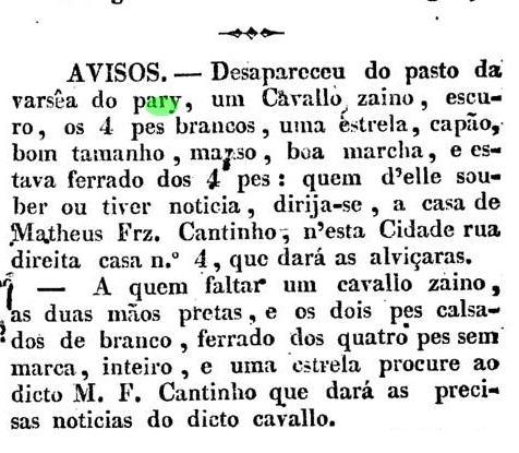 cavalo varzea  11 fev 1830