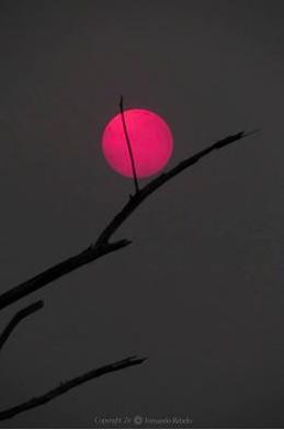 captura-de-tela-2017-01-16-as-20-50-00